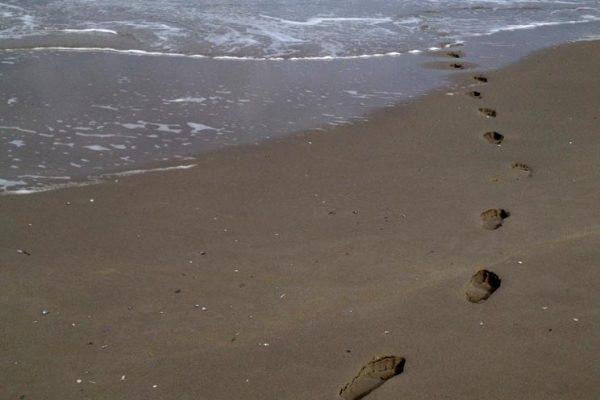 loop de zee in