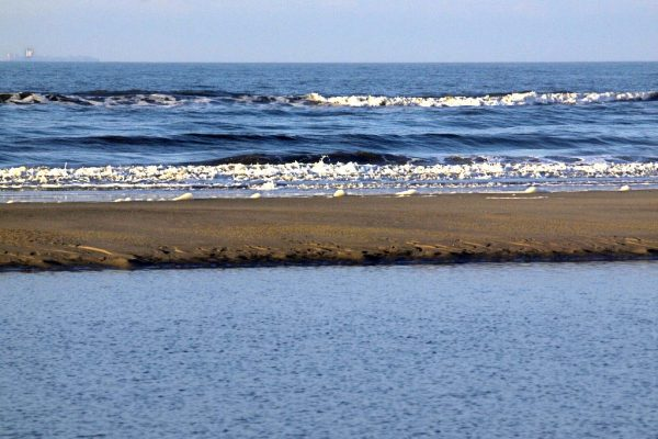 zee strand en rustig water