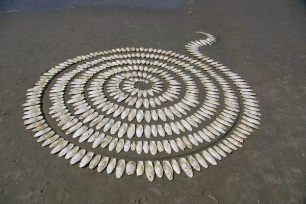 2016 krachtwiel van sepia's 17 juli b