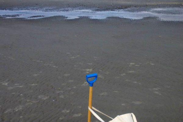 schepje met tas op het strand